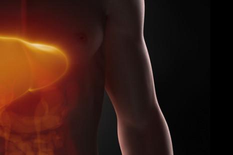 Resweratrol może chronić przed stłuszczeniem wątroby u alkoholików: Badanie
